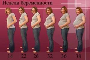 Пояса для похудения для толстых